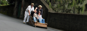 Monte Toboggan Rides